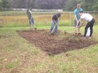 Projeto horta Pioneiros